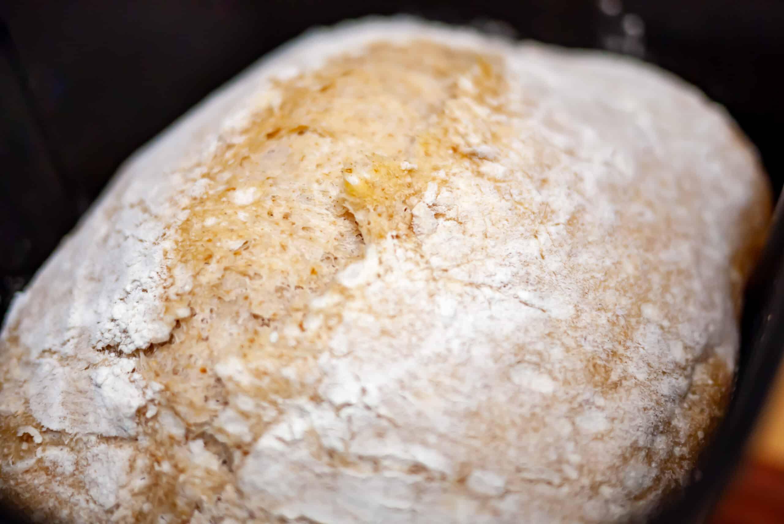 bread machine sourdough bread baked