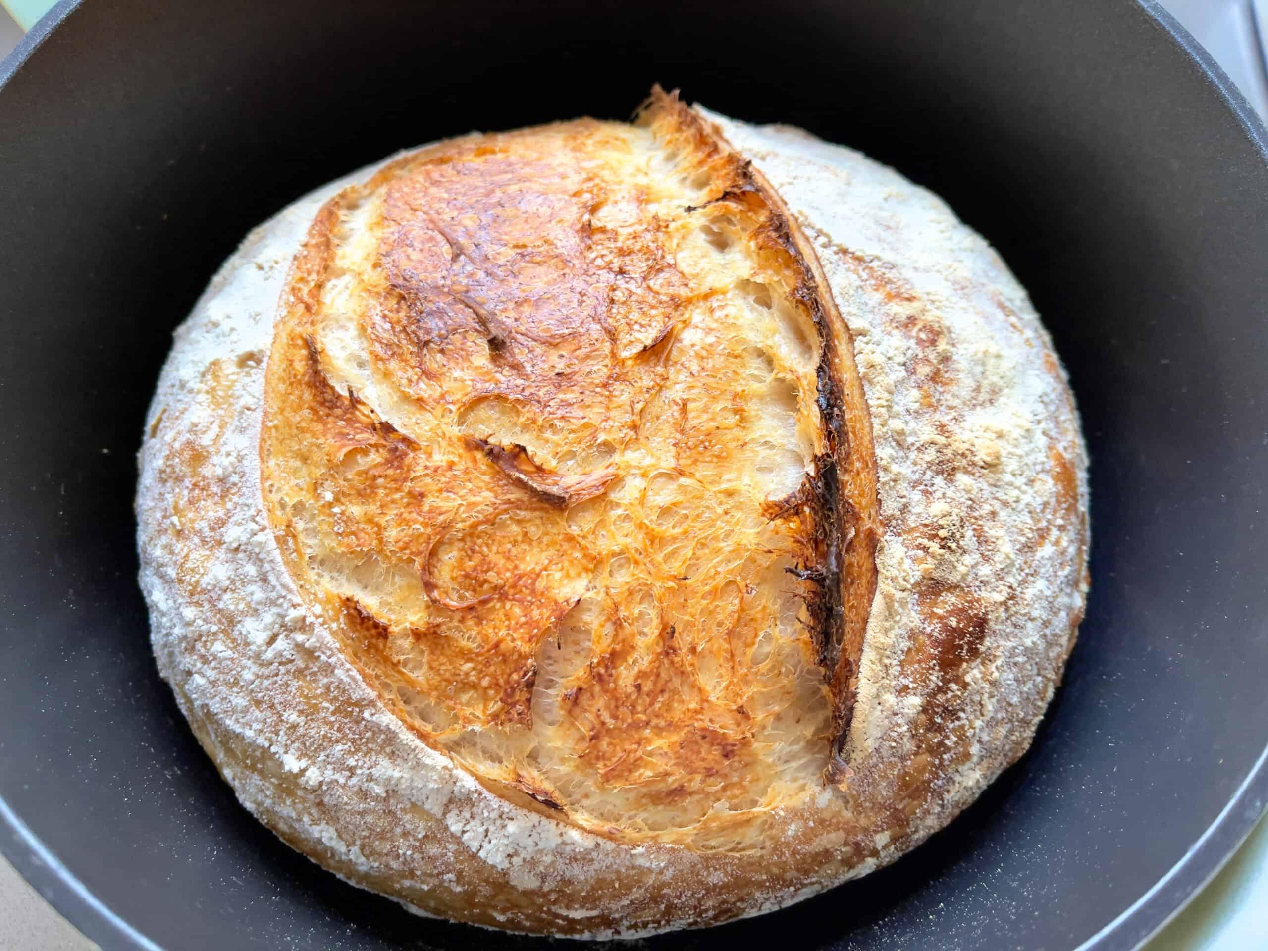 Beginners sourdough bread recipe (Bread with prozimi) baked