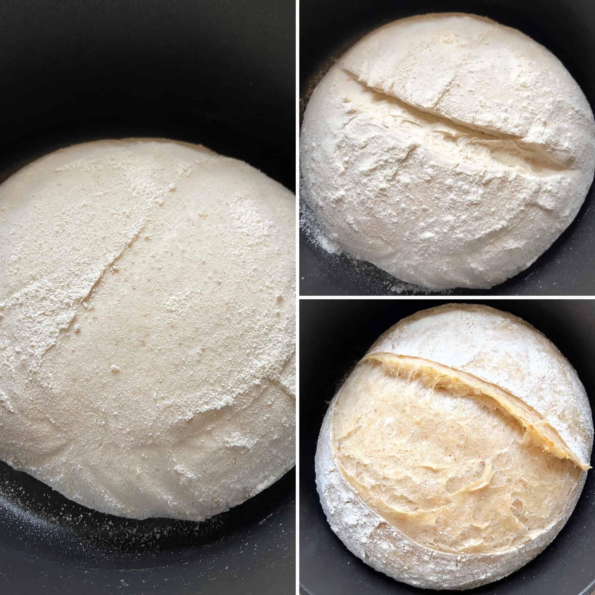 Beginners sourdough bread recipe (Bread with prozimi) proofing