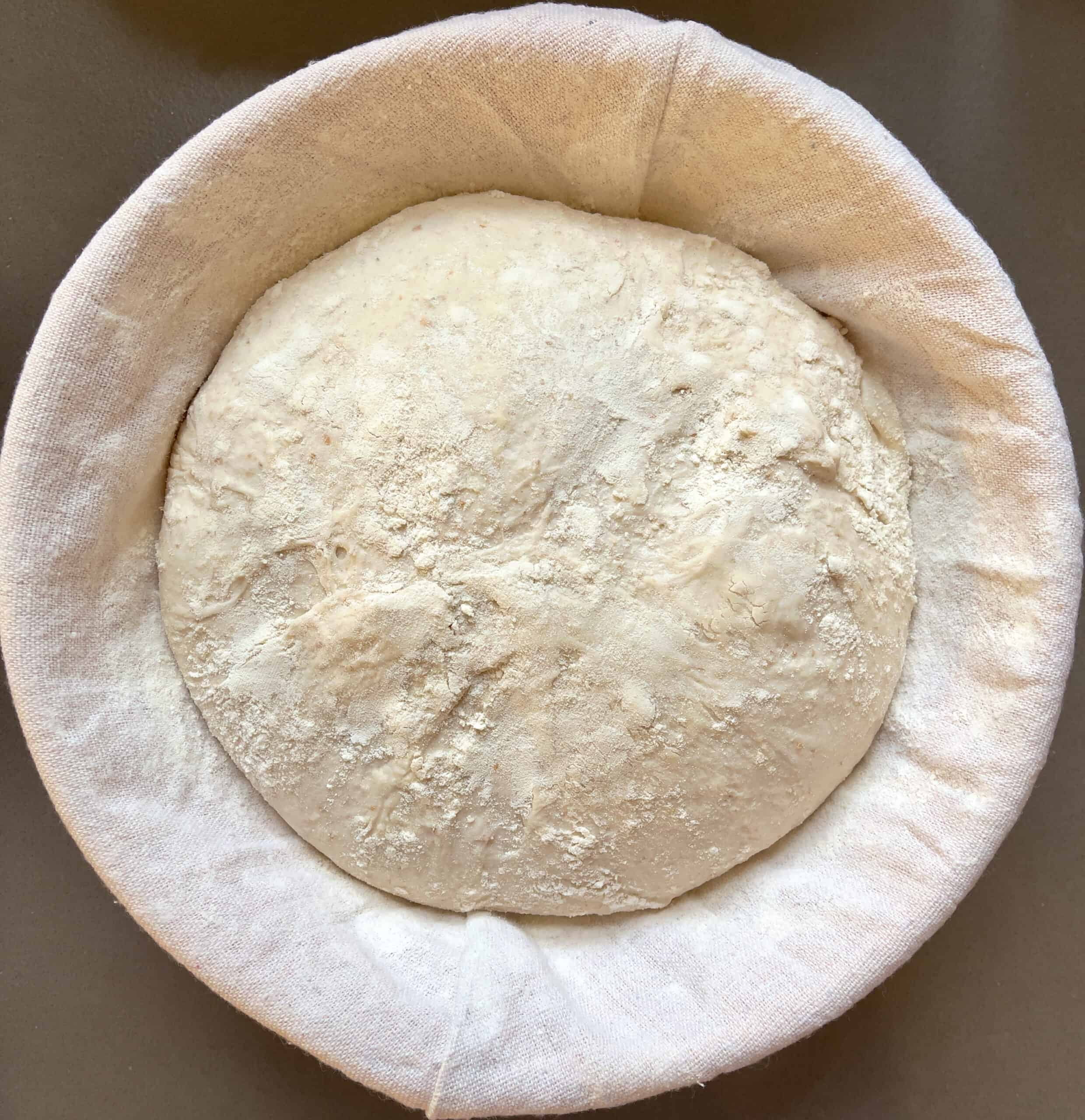 Beginners sourdough bread recipe (Bread with prozimi) rising